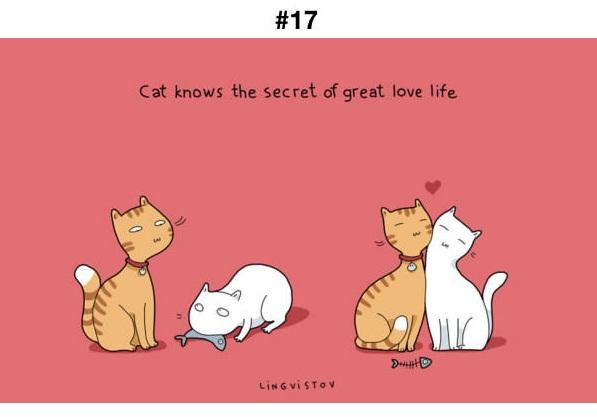 Manfaat Kucing 17