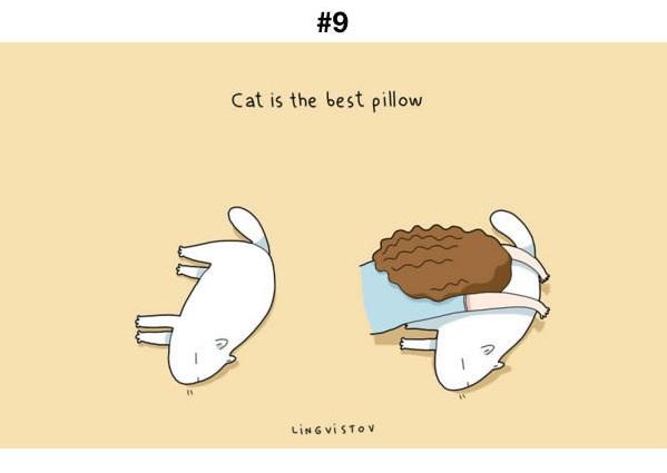 Manfaat Kucing 9