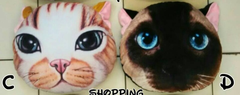 Bantal Boneka Kucing C&D