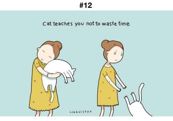 Manfaat Kucing 12