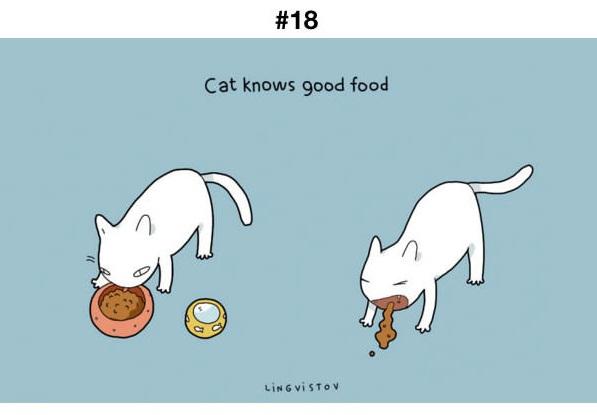 Manfaat Kucing 18