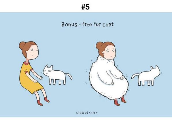 Manfaat Kucing 5
