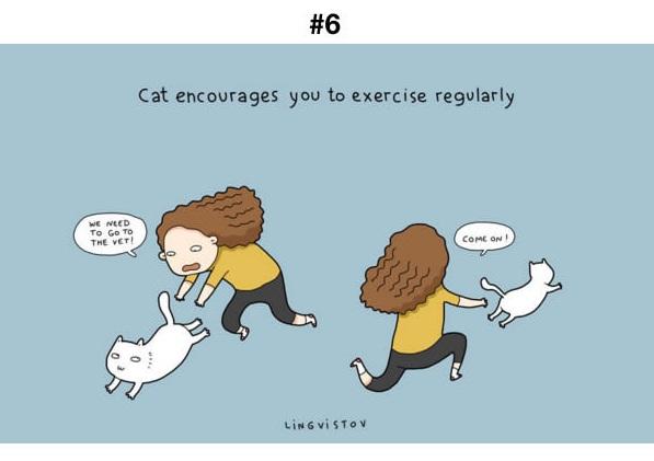 Manfaat Kucing 6