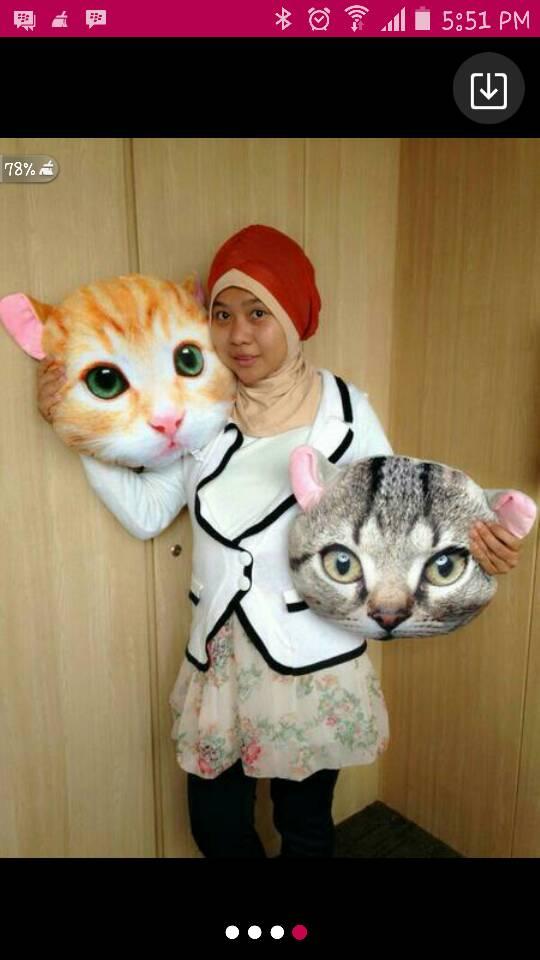 Penampakan Bantal Boneka Kucing