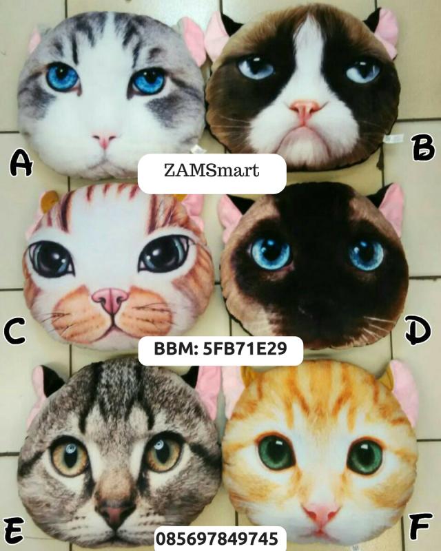 Jual Bantal Kucing (Pemesanan di bawah)
