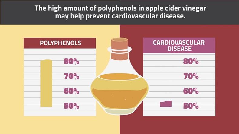 Search Results For: cara konsumsi cuka apel