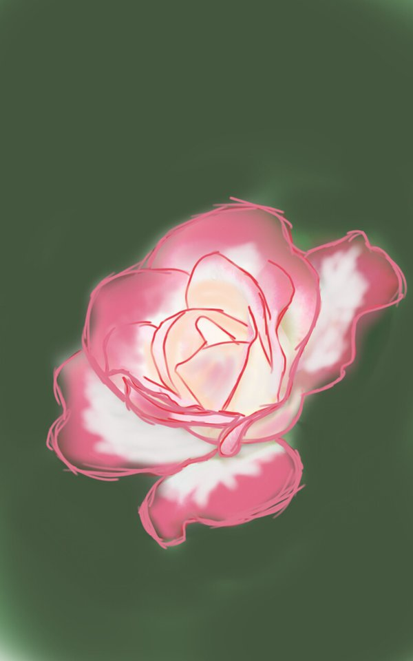 gambar lukisan bunga mawar